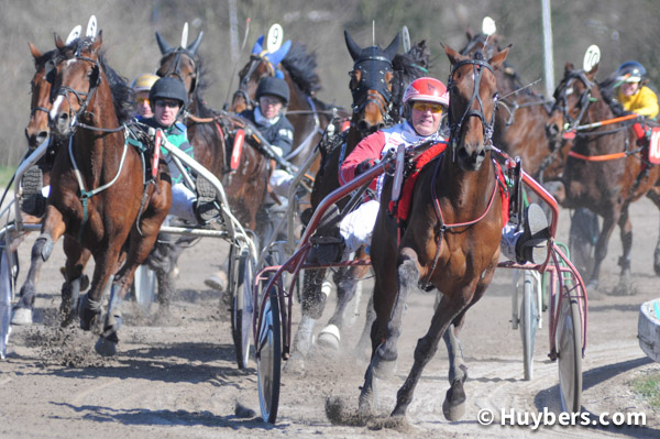 mac-paardensport-drafsport-fotografie-huybers